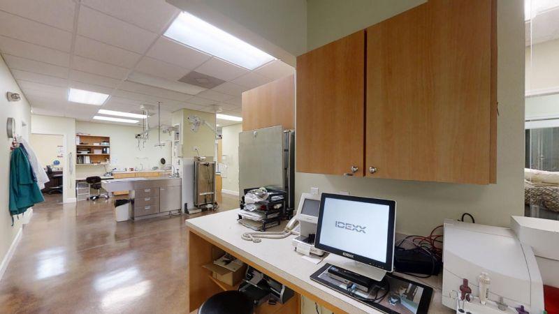 Atlantic-Animal-Clinic-04052020_060727